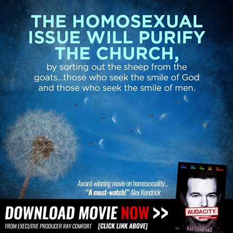 Homosexual issue will purify the church